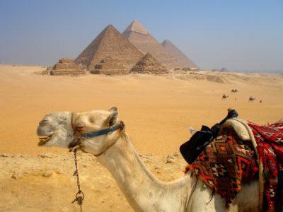 12 Giza, Egypt DSC02514_Fotor