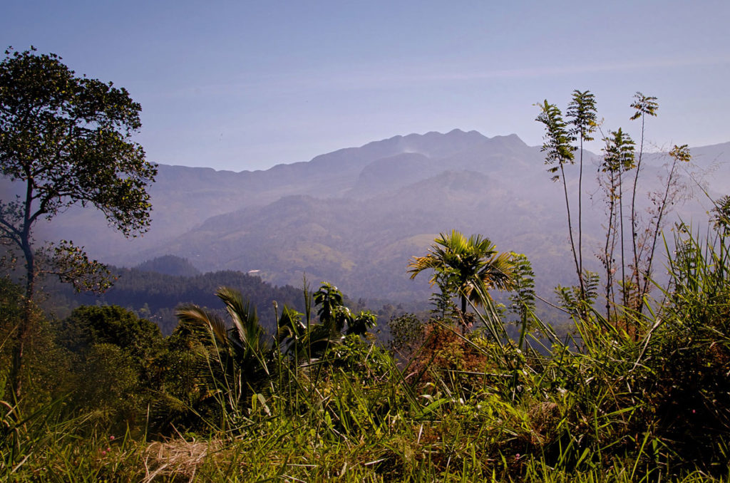 View of the Knuckles Mountains - Kandy