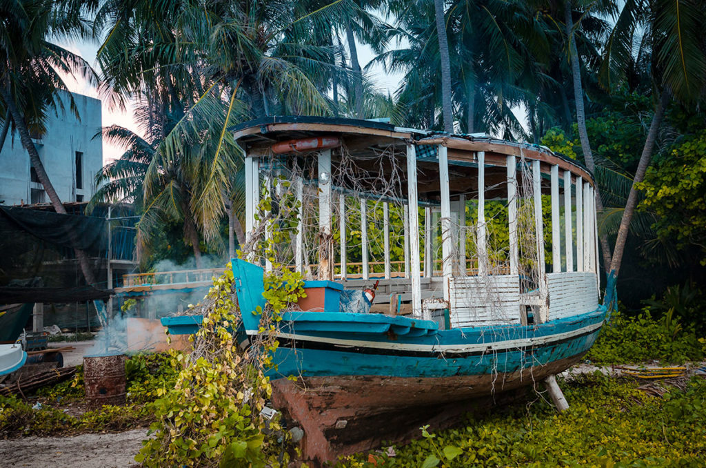 Old boat covered in vines - Dhigurah
