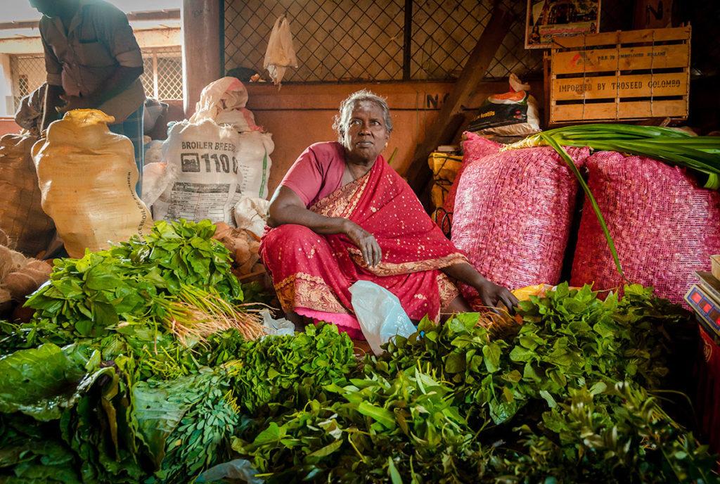 Vegetable vendor at a market - Jaffna City