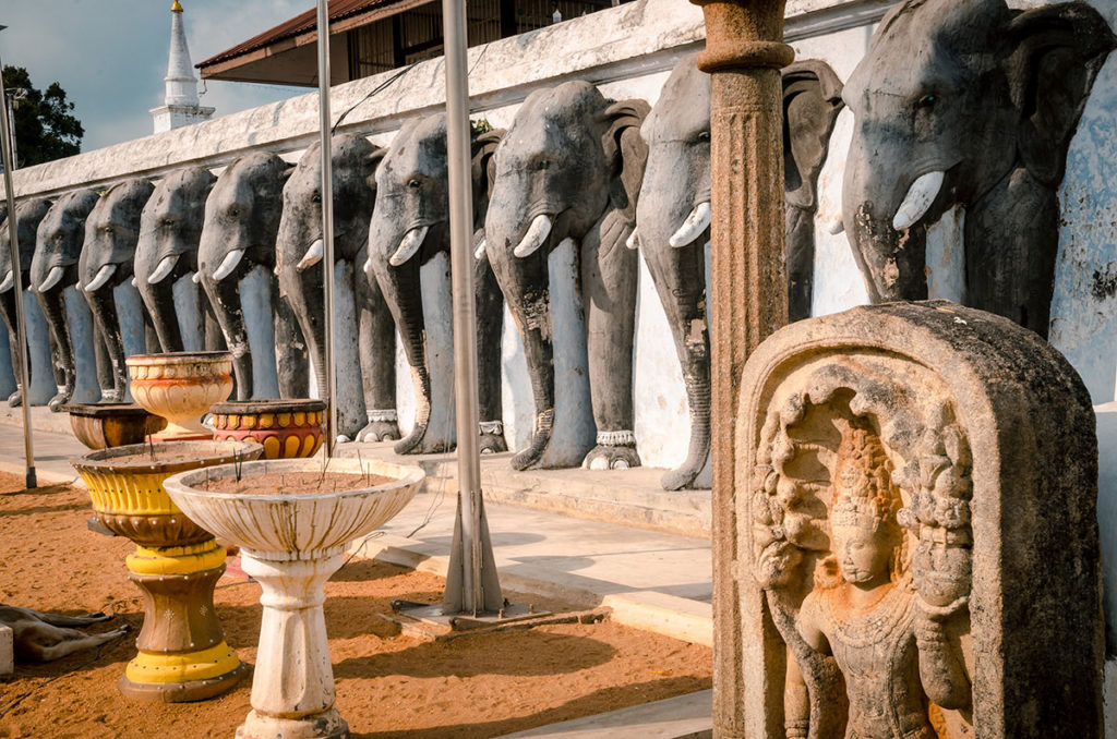 Anuradhapura Elephant Wall - Sri Lanka
