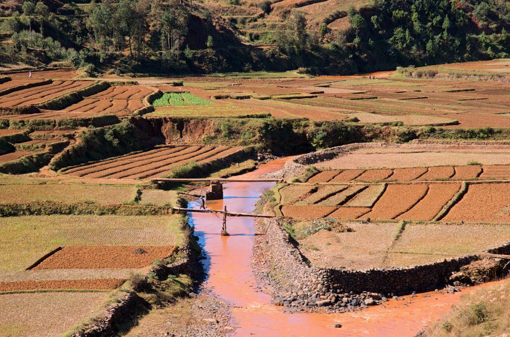 Madagascar Terraced Crops