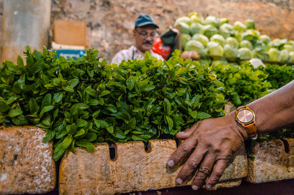 Port Lewis Market Mauritius