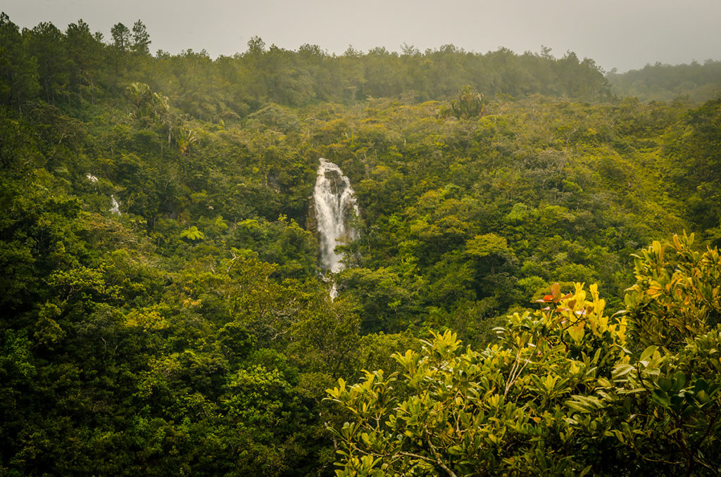 Black River Gorges National Park Waterfall