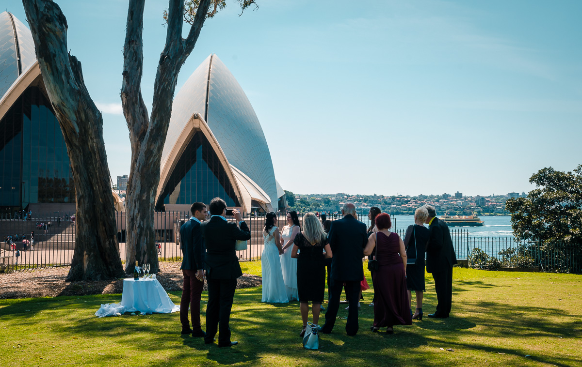 Wedding in Sydney Botanical Gardens
