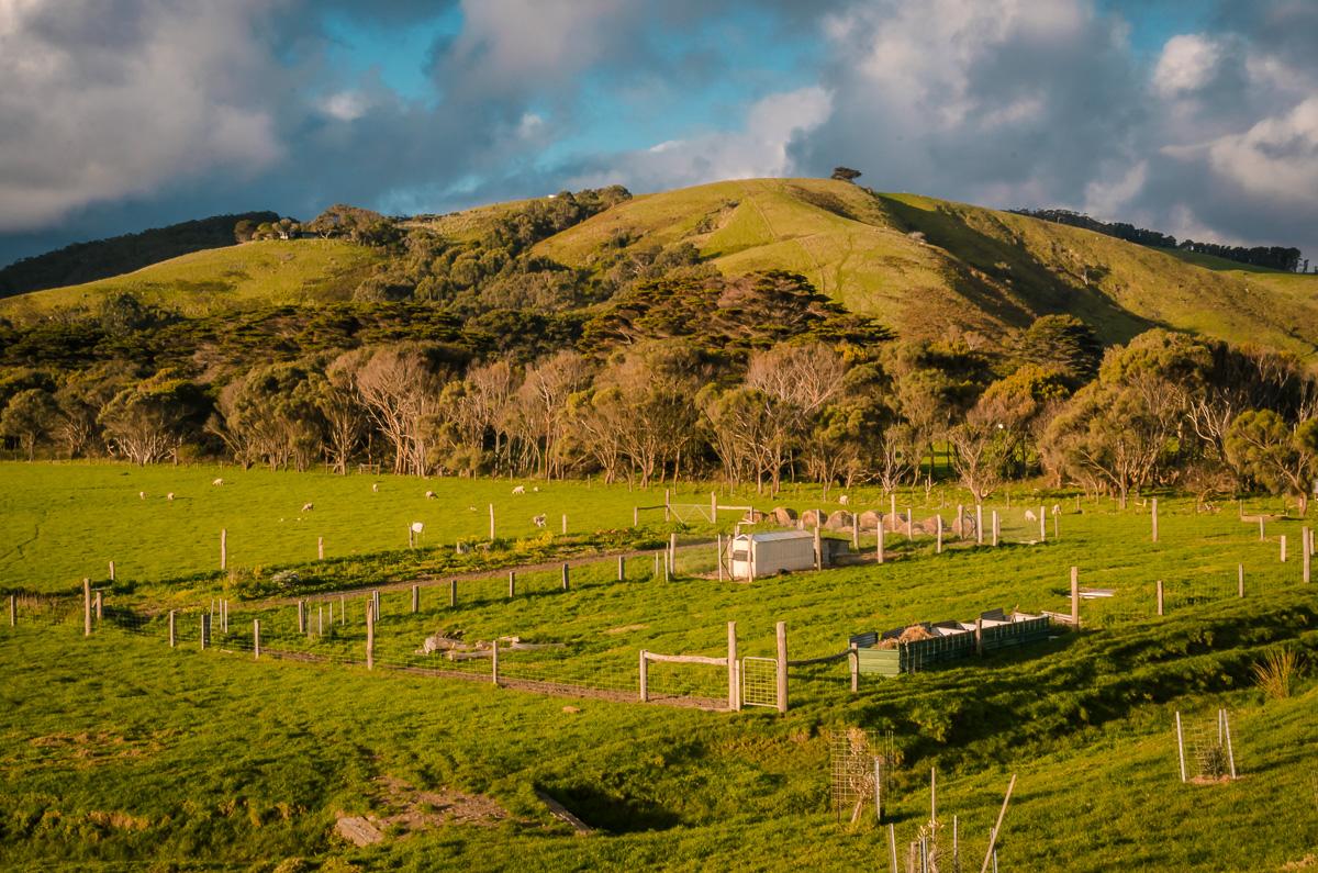 Australia Great Ocean Road Farmland