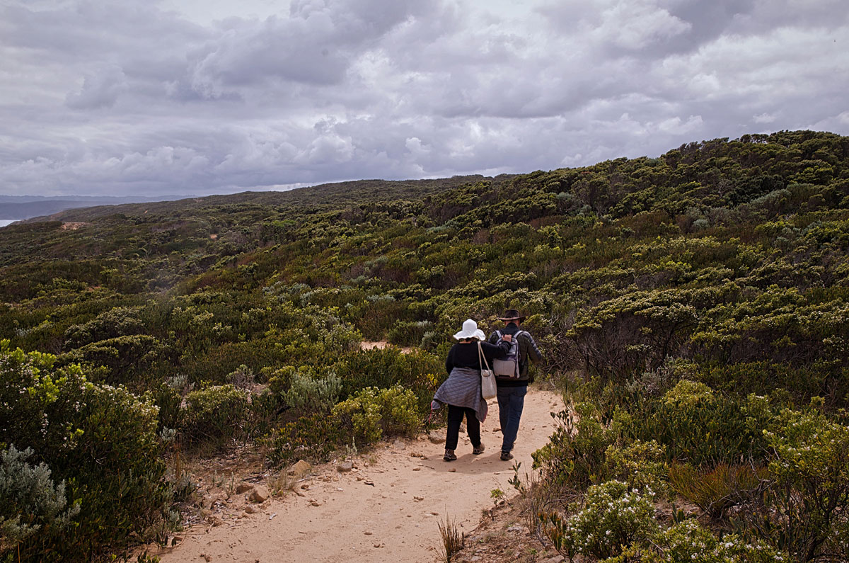 Great Ocean Walk to Aire River