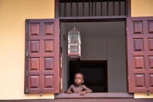 Moengo - Boy by Bird Cage